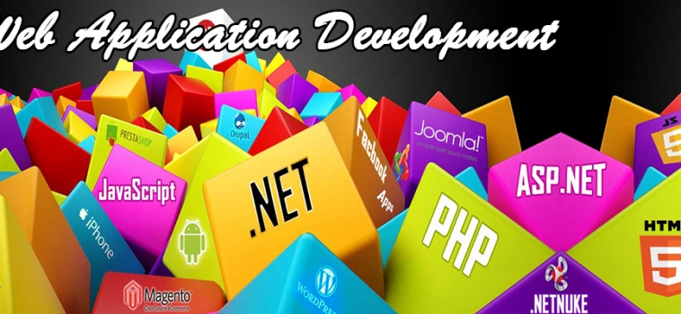 Discover Custom Web Development