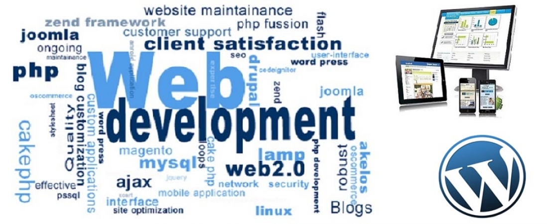 Which Web Language You Should Use For Your Web Development?
